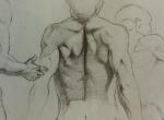 Anatomy-2.jpg