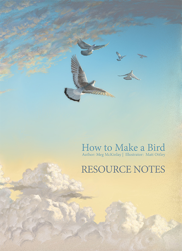 Resource notes cover for How to Make a Bird